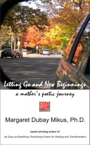 2011 LGNB 95 smaller front coverD ebook for Smashwords