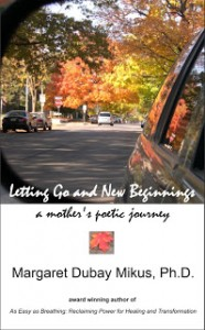 2011 LGNB 95 smaller front coverD ebook for Smashwords-2